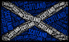 Scottish flag_99505997