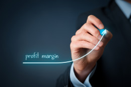 Profit margin_282393995